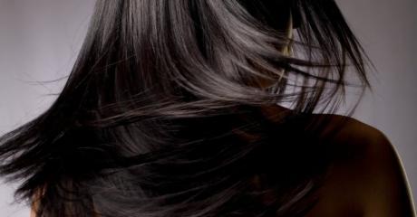Portfolio Image 4